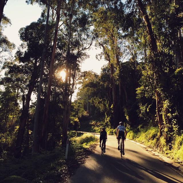 @caztheturtle, Australia