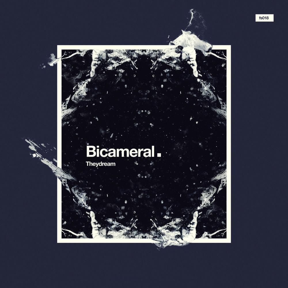 BICAMERAL  Theydream  FS018