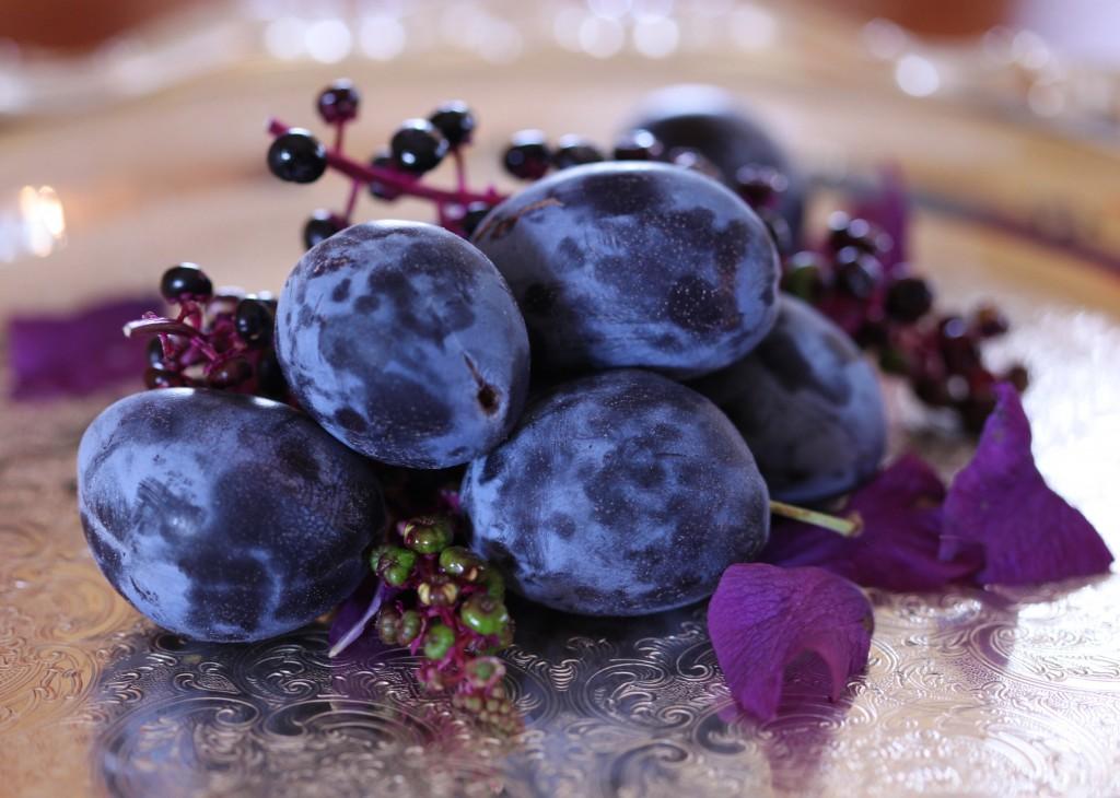 plums petals poke berries III