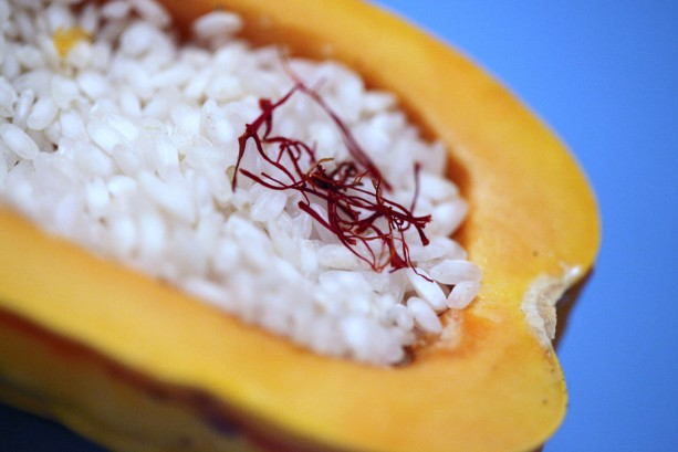 Squash, Saffron Threads, & Arborio Rice
