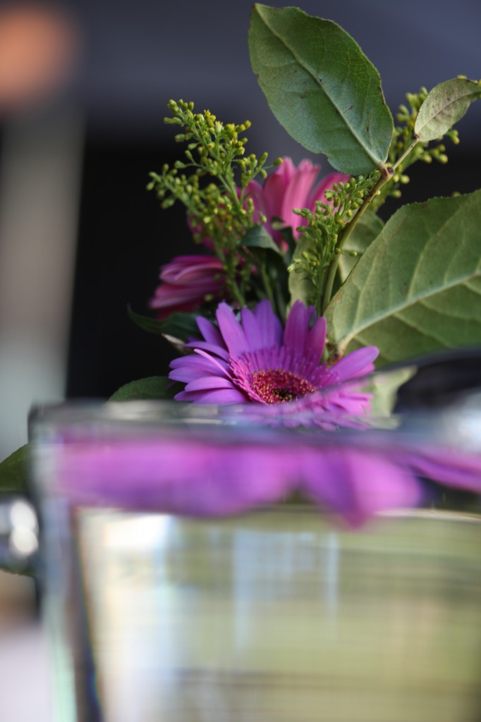 flower.pitcher