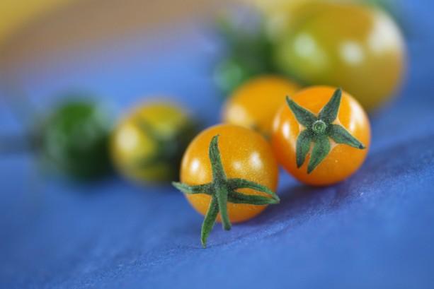 cherry tomato duo