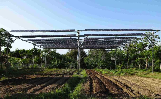 Figure 1: Photo of Solar Sharing Field Test via Akira Nagashima