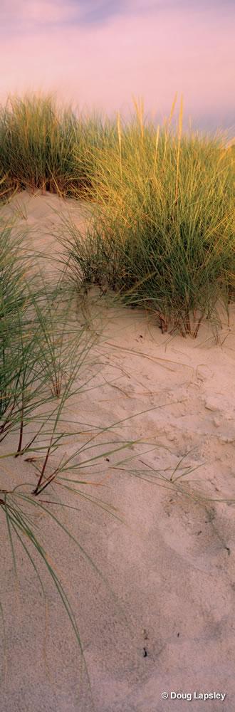 Morar Dunes