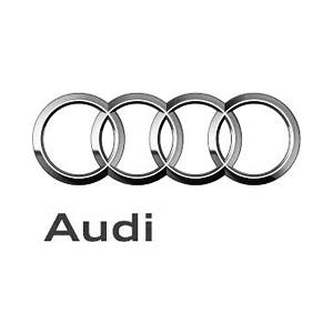 Logos_Clients_epicminutes_audi.png