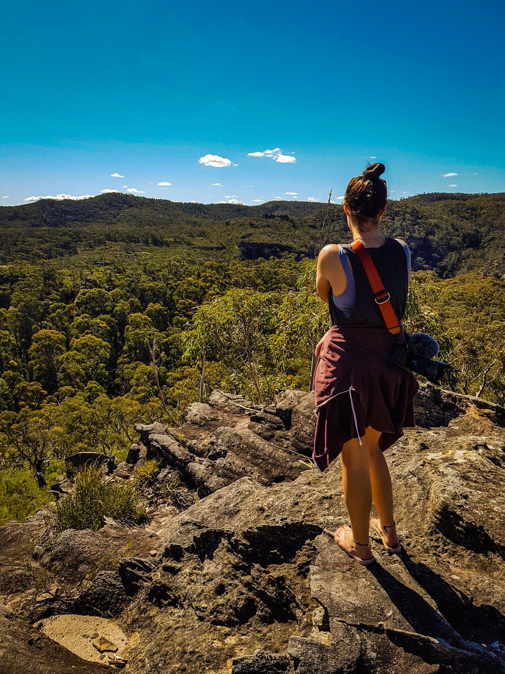 Enjoying the view.   Pierces Pass, Blue Mountains National Park