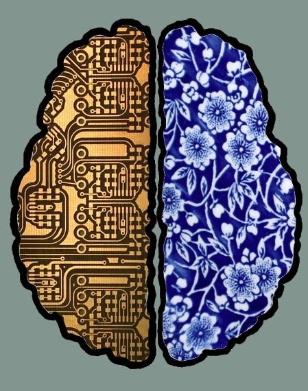 braintop7.jpg