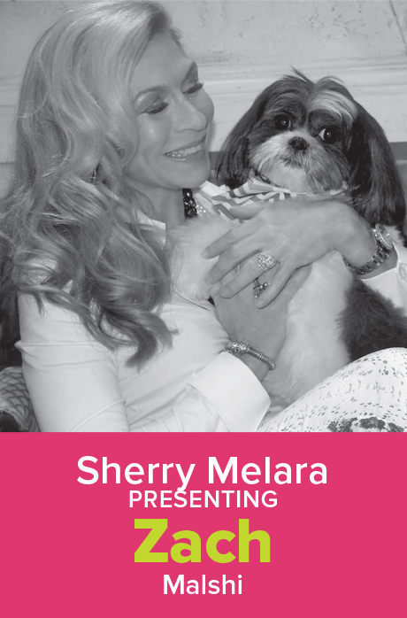 SherryMelara.jpg