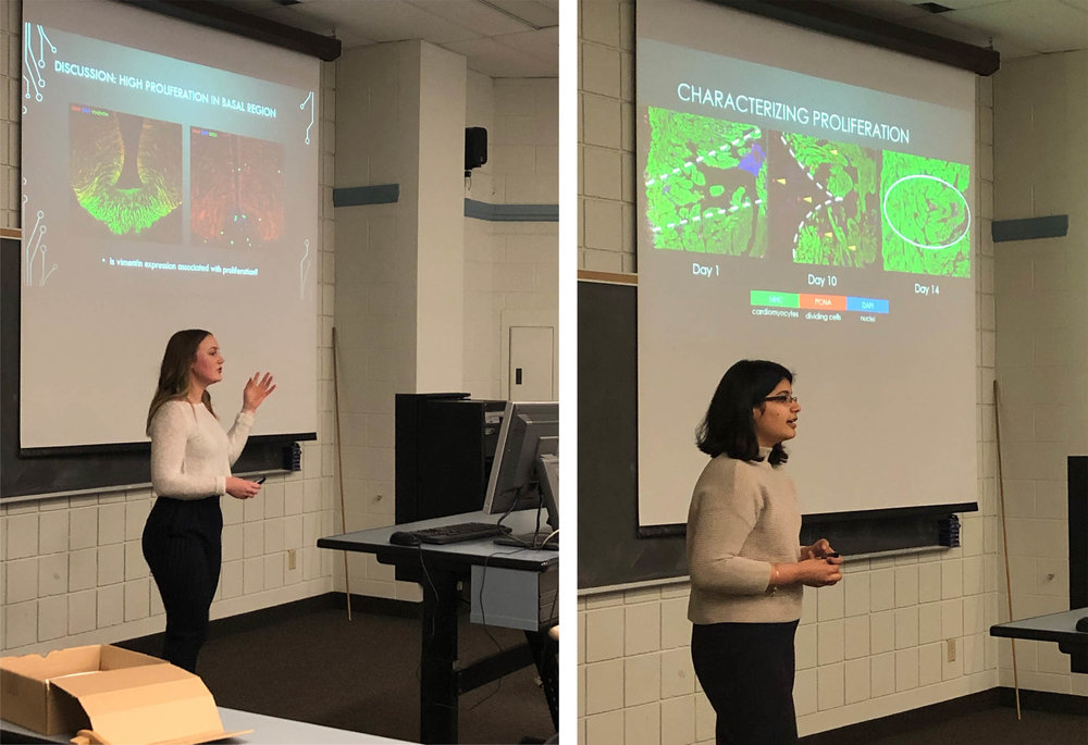 Chloe and Manali own the podium! - Exceptional research presentations by our exceptional undergrad project students