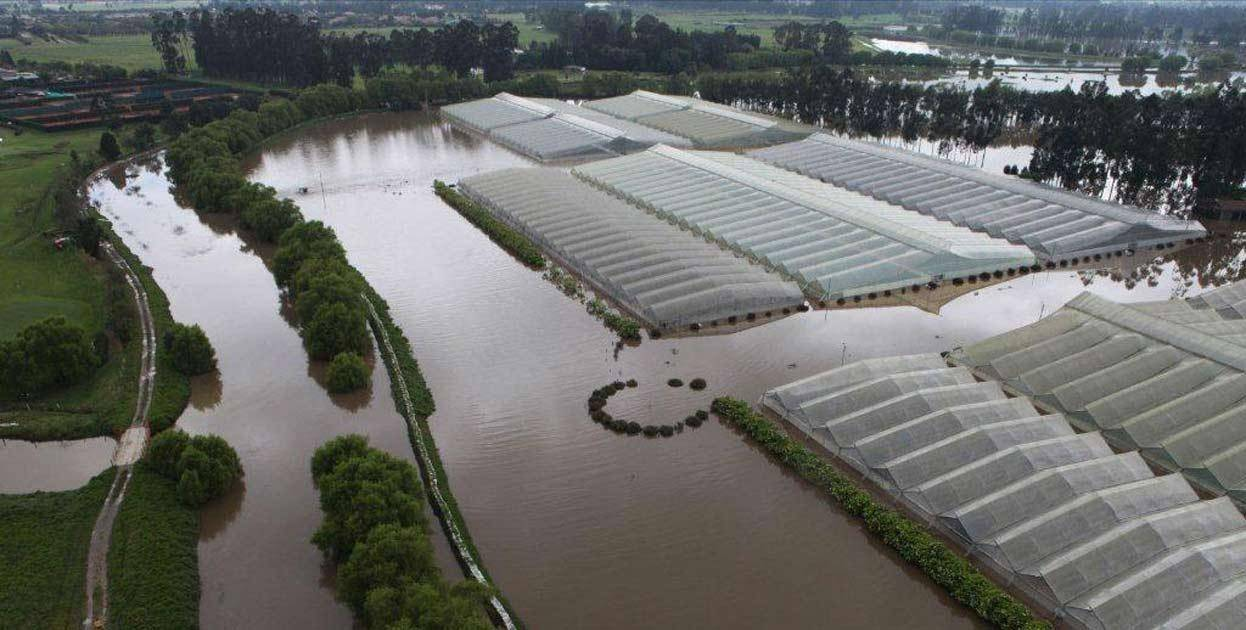 Flooding at Colombia Flower Farm