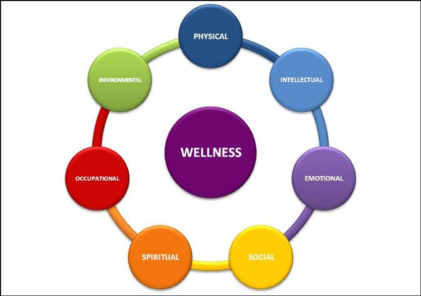 Personal Reflection on Health and Wellness - Essay Example