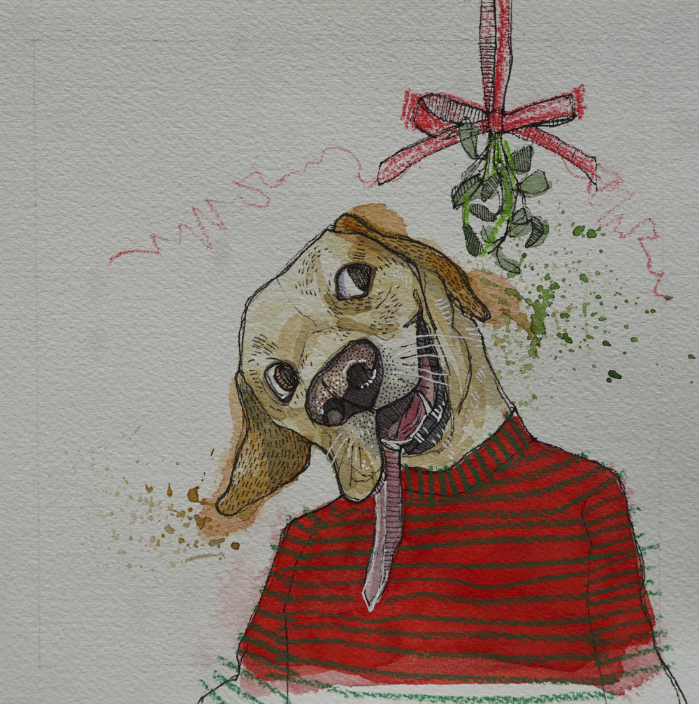 yellow lab with mistletoe, pen, watercolour, soft pencil crayon & acrylic paint marker on cold pressed paper, 8x8(in), $100 + GST, 2017