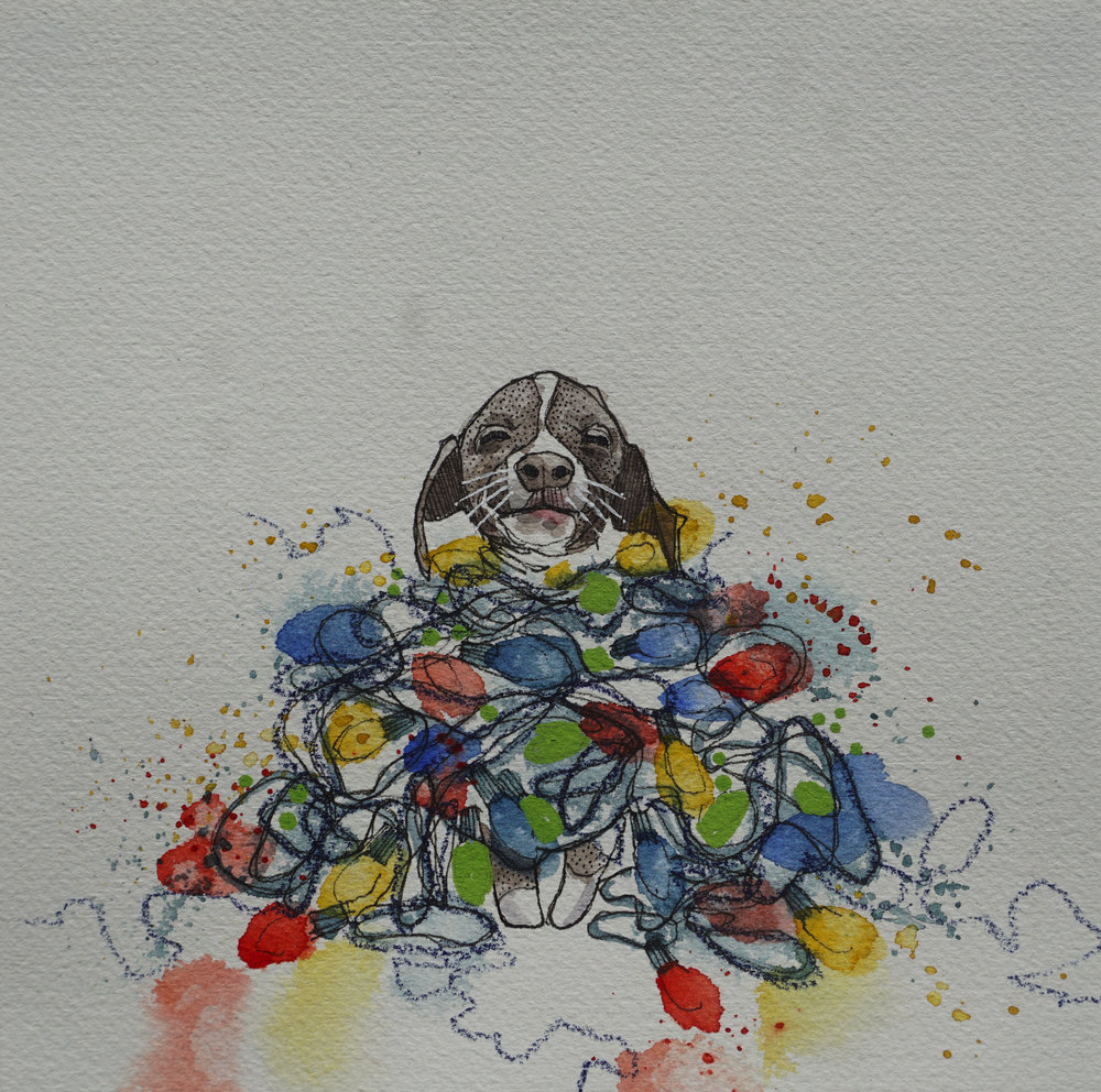 puppy in a pile of christmas lights, pen, watercolour, soft pencil crayon & acrylic paint marker on cold pressed paper, 8x8(in), $100 + GST, 2017