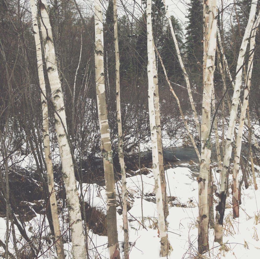 vsco-photo-1-3.jpg