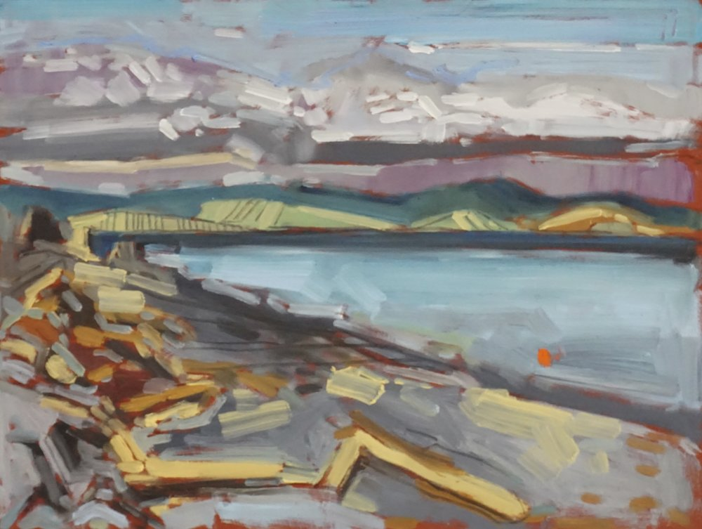 bere point, malcolm island, BC,  oil on masonite, 9x12(in), $150 + GST,  2018