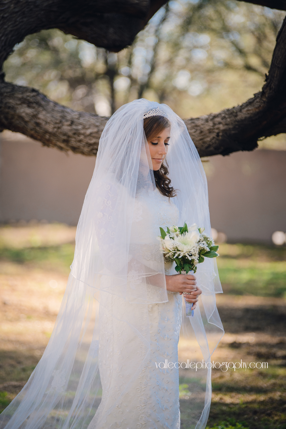 Bride in Tucson