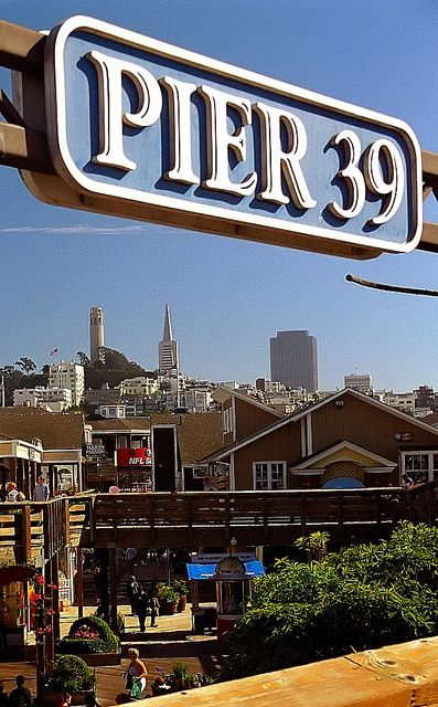 "San Francisco - Fisherman's Wharf ""Pier 39""   by   David Paul Ohmer   on   Flickr"