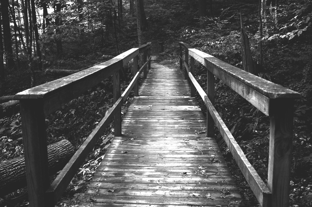 A journey awaits as a wooden bridge leads an explorer deeper into a forest at Brown County State Park in Nashville, Ind.