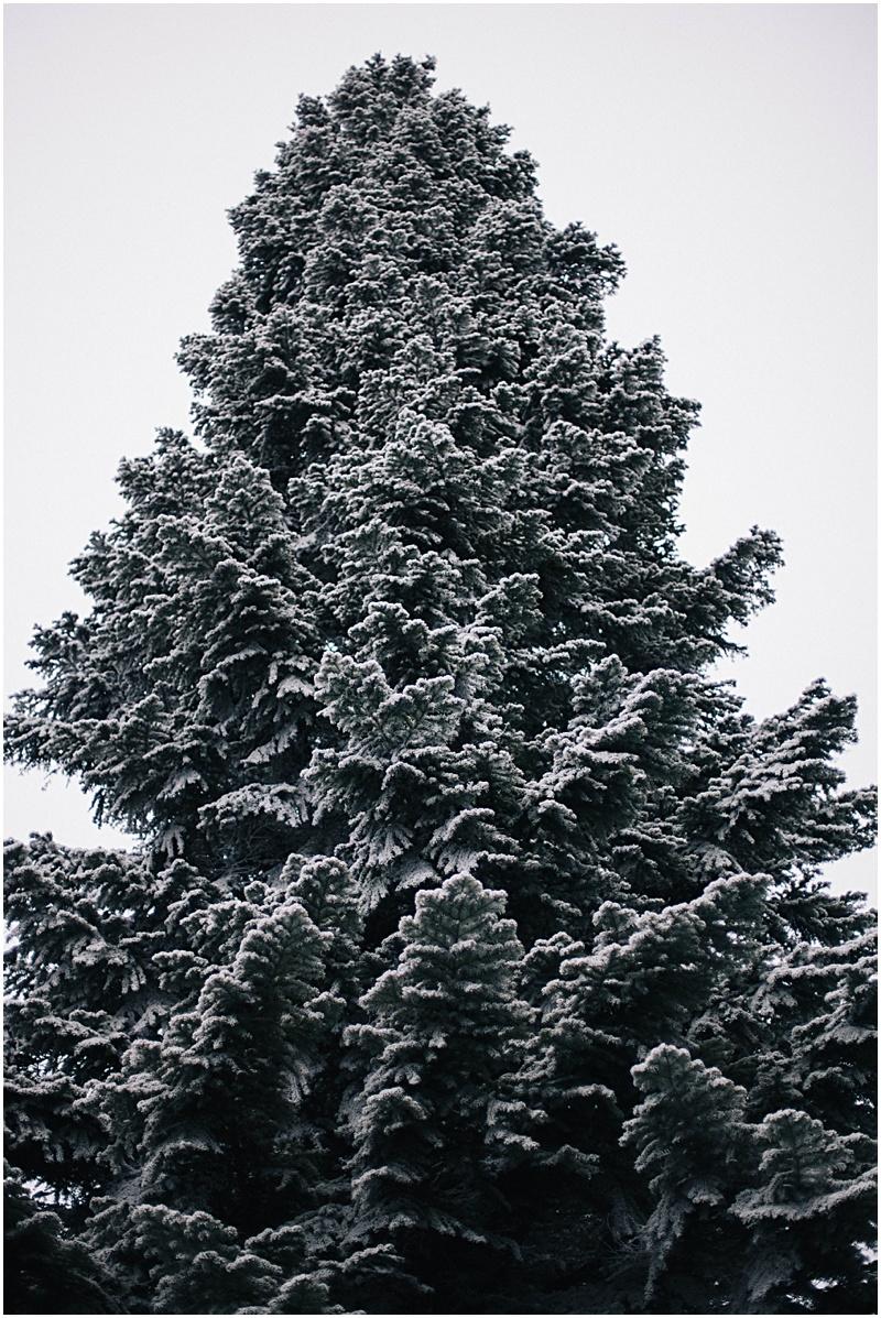 2014-01-19_0029.jpg