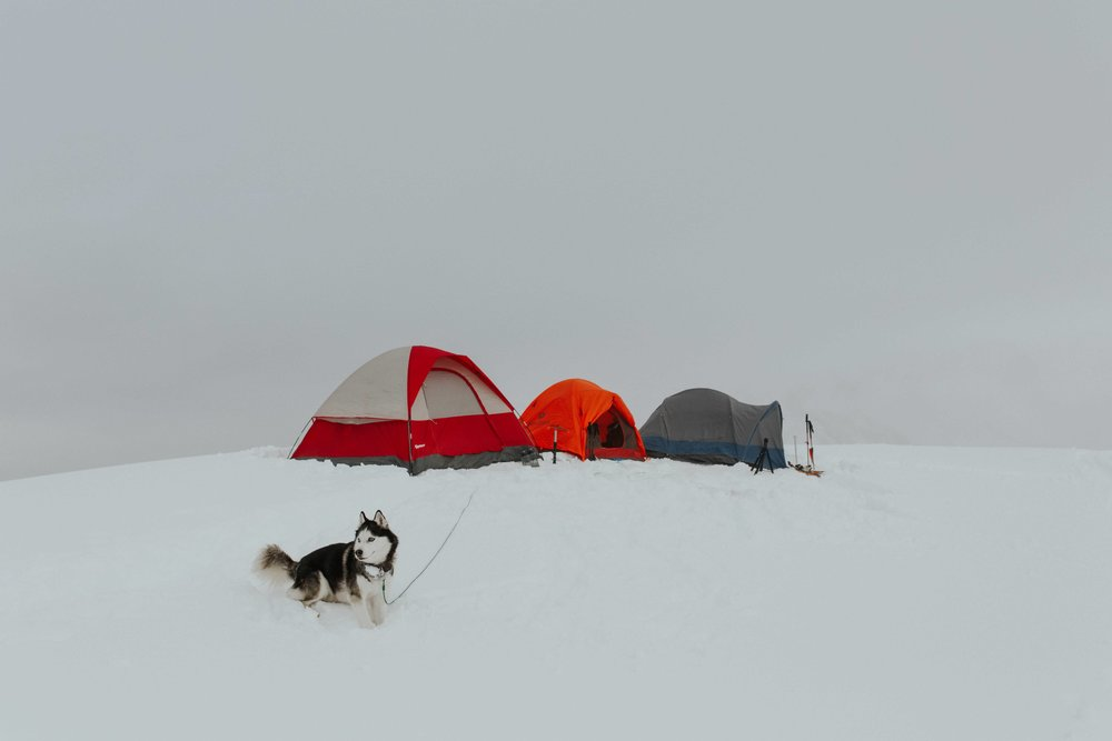 adventure-wedding-photographer-artist-point-snow-camping-elopement-photographer-husky-marmot-tent.jpg