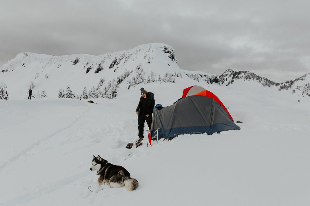 north-cascades-elopement-photographer-mount-baker-husky-snow-camping.jpg