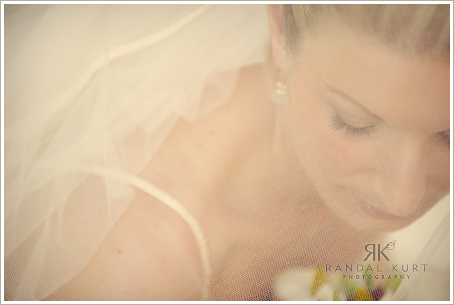 Bride and veil