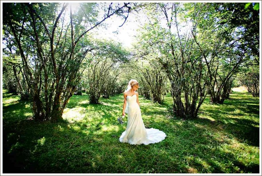 Bride amongst the chestnut trees