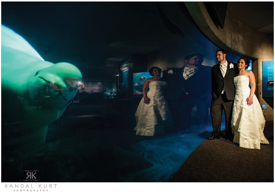 vancouver-aquarium-wedding