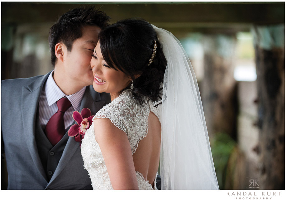 Wedding Photography at Dr Sun Yat Sen Gardens with reception at Sun Sui Wah Restaurant