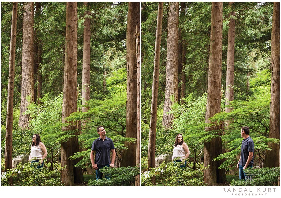 forest-engagment-session