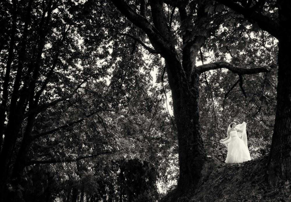01-dramatic-fine-art-wedding.jpg