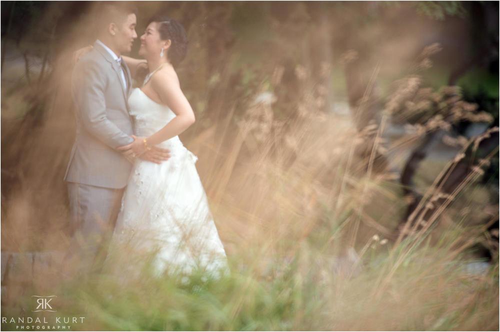 06-vancouver-aquarium-wedding-photography.jpg