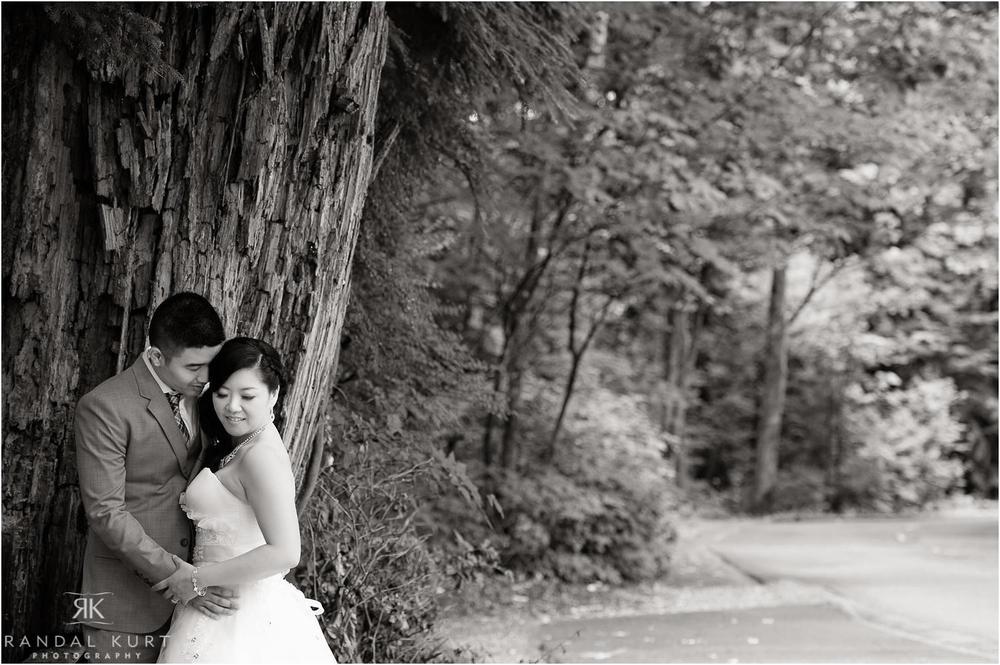 17-vancouver-aquarium-wedding-photography.jpg
