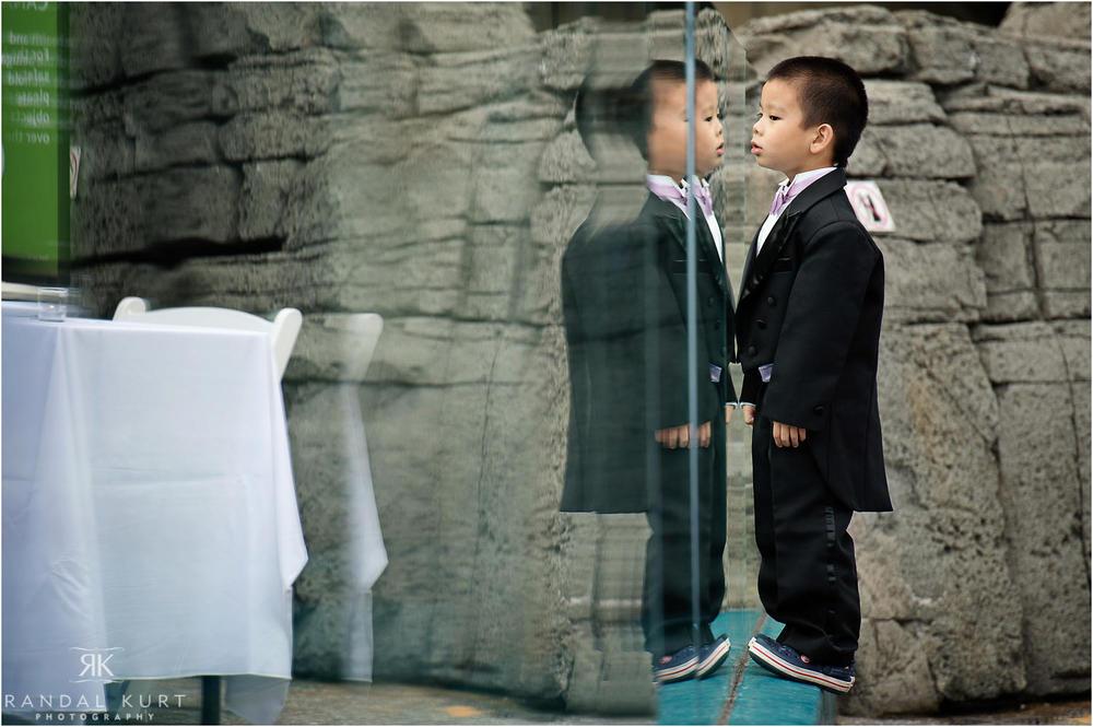 26-vancouver-aquarium-wedding-photography.jpg