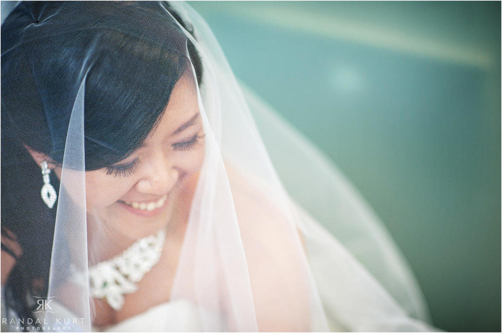 27-vancouver-aquarium-wedding-photography.jpg