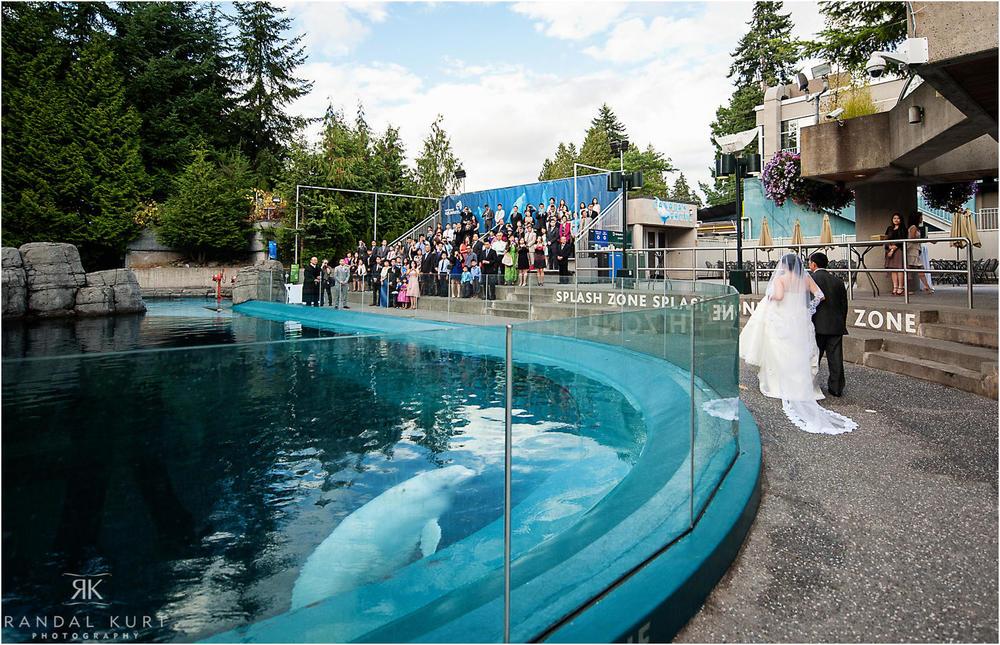 29-vancouver-aquarium-wedding-photography.jpg