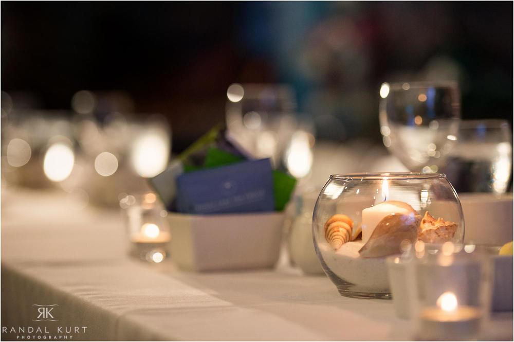 34-vancouver-aquarium-wedding-photography.jpg