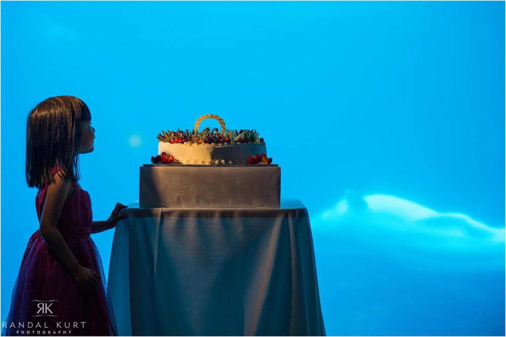 39-vancouver-aquarium-wedding-photography.jpg