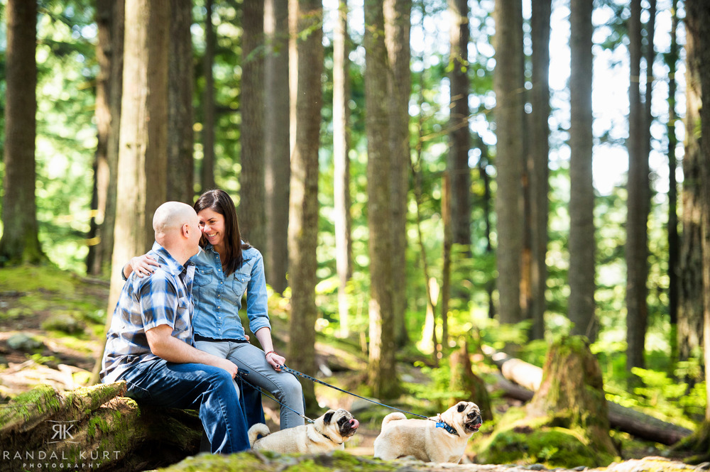 04-forest-engagement-session.jpg