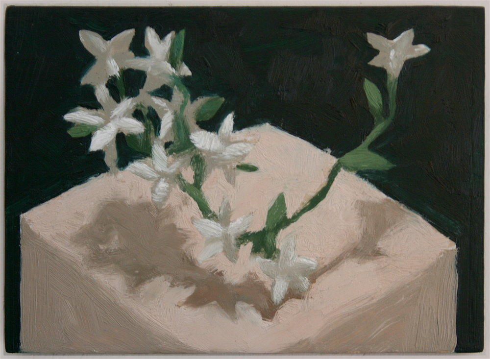 1_Still Life With Jasmine Looking All Around.JPG