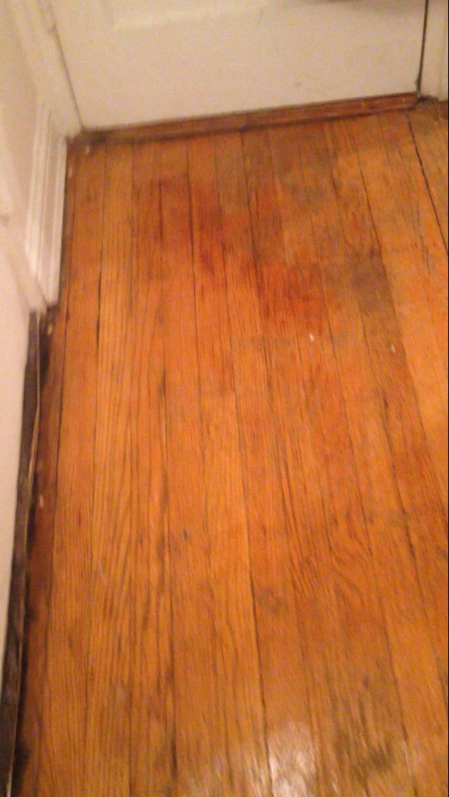 This is just one of the many hideous wood floors I've encountered. Don't get me started on the dirt.