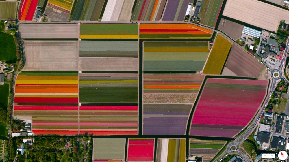 1/1/2014 Tulip Fields Lisse, Netherlands 52.271256°N 4.546365°E