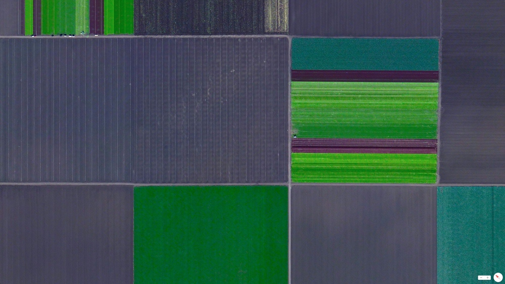 4/3/2014 California agriculture  Gonzales, California 36°30′24″N 121°26′40″W