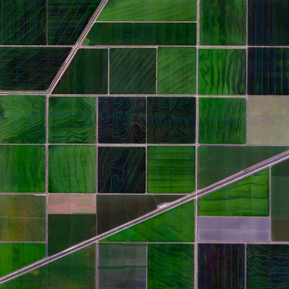5/4/2015  Agriculture and irrigation canals  Meridian, California, USA  38.925232927°, -121.714576895°     Agricultural development in Meridian, California is partitioned by irrigation canals that originate at the Sacramento River. On average, 9.6 million acres of cropland across the state are irrigated with 11 trillion gallons of water every year. As of 2014, farmers in California cultivated approximately half of the United State's fruits, vegetables, and nuts.
