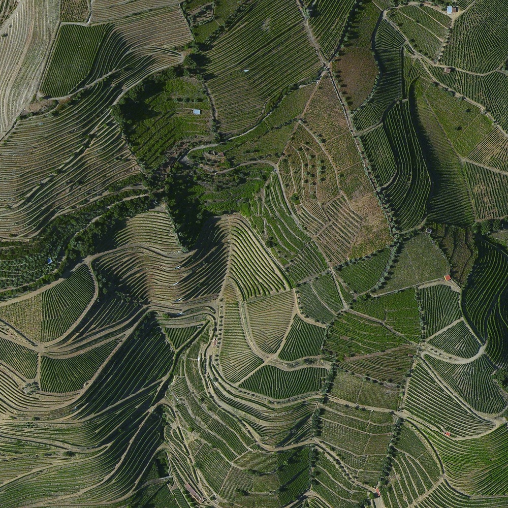 6/2/2015 Port vineyards Douro Valley, Portugal 41.167121280°, -7.773068522°   The terraced hillsides of the Douro Valley in northern Portugal are covered with grape vines that rise steeply from the Douro River below. The region is recognized as the home of port wine - a sweet, red wine that is often served with dessert.