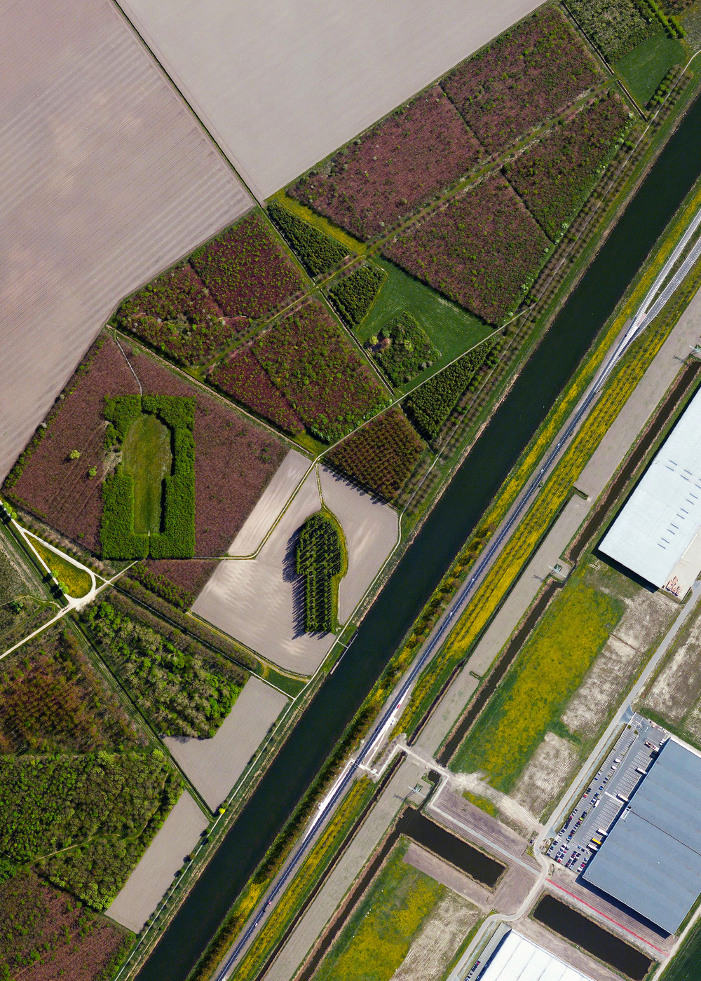 "11/7/2015   The Green Cathedral   Almere, Netherlands   52.323157°N 5.318778°E      Look closely at this Overview and you'll see ""The Green Cathedral"" - an artistic planting of 178 Lombardy poplar trees near Almere, Netherlands. The ""Cathedral"" is 50 m (490 ft) long and 75 m (246 ft) wide, which mimics the exact size and shape of the Cathedral of Notre-Dame in Reims, France. The artist, Marinus Boezem, also made a clearing in a nearby beech forest of the same shape to suggest that as the poplars decline, beech trees will fill the empty space to symbolize a cycle of growth and decline."