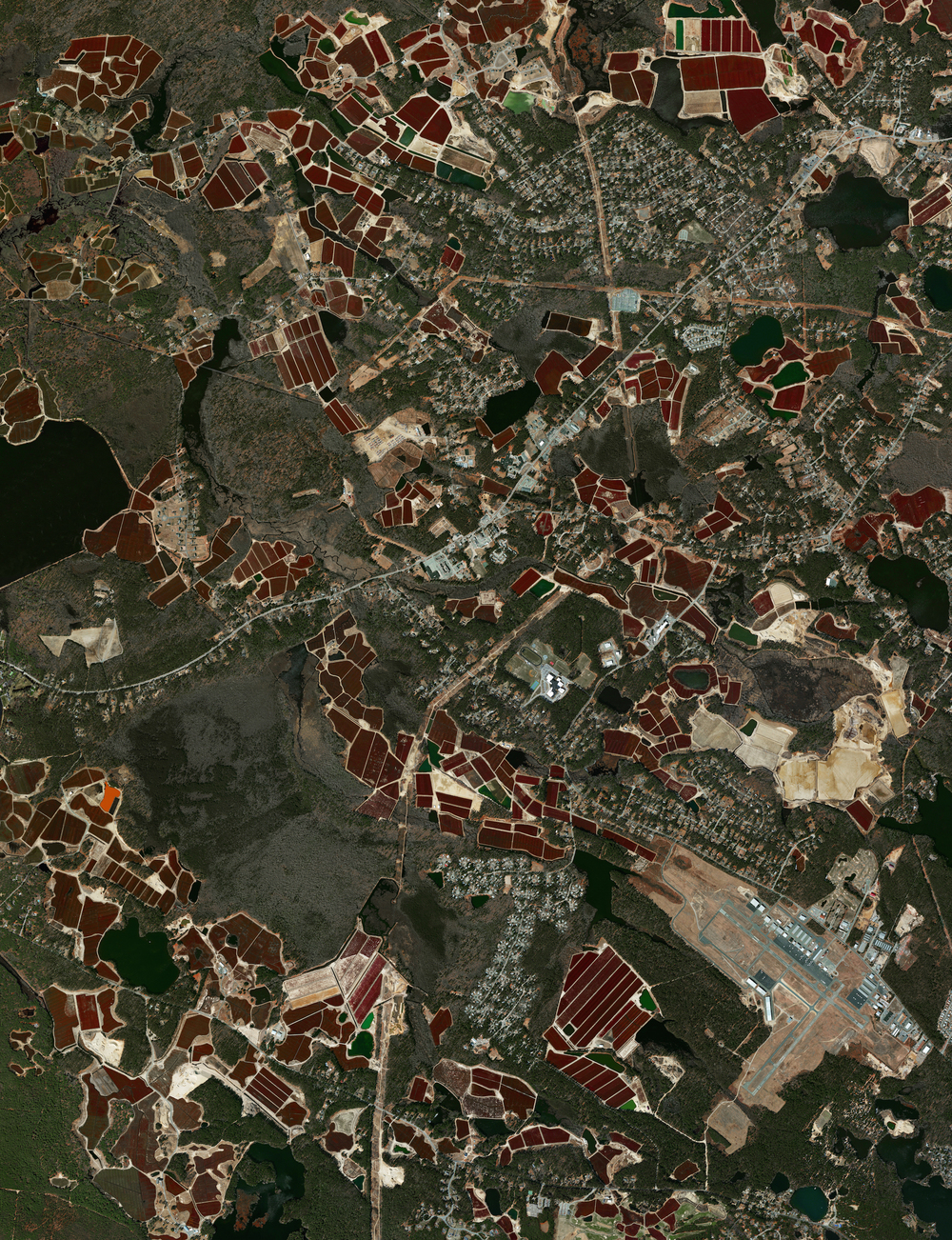 11/26/2015 Cranberry bogs Plymouth, Massachusetts, USA 41.914292034°, -70.792760538°   If you put cranberries on your Thanksgiving turkey today, there's a chance they came from these bogs in Plymouth, Massachusetts, USA. Cranberries are a Native American wetland fruit that are grown on low-lying vines, floating in beds of water layered with sand, peat, gravel, and clay. Coincidentally, the town of Plymouth is also the site of the colony founded by the Pilgrims in 1620 and was the home to the first Thanksgiving feast in 1621. Happy Thanksgiving from Daily Overview!