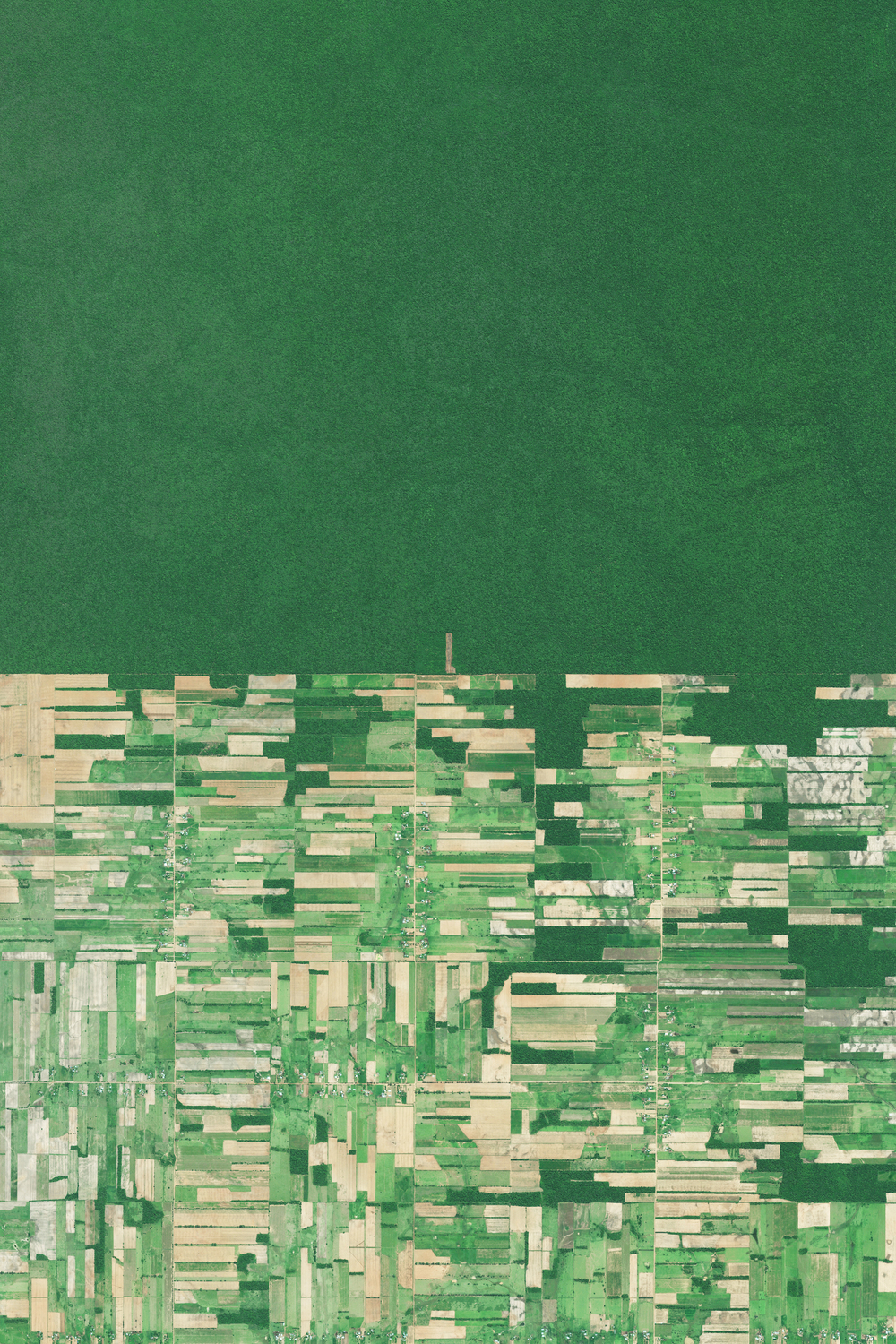 12/14/2015 Deforestation Santa Cruz, Bolivia -17.387750000°, -60.562130556°   Deforestation of the rainforest is visible in Santa Cruz, Bolivia. Deforestation in the country has primarily been driven by the expansion of mechanized agriculture and cattle ranching. This Overview highlights the country's struggle to expand food production in order to meet the needs of its growing population, and the sacrificial destruction of its forests that has taken place to do so. Deforestation rates have been stable though relatively high, at about 200,000 hectares a year.