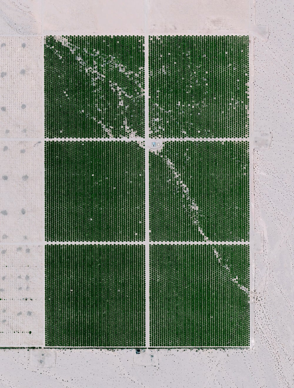 1/12/2015  Cadiz Ranch  Mojave Desert, California, USA  34.494638, -115.500469     Cadiz Ranch in Essex, California is located in the middle of the Mojave Desert. The organic farm grows lemons, table grapes (dried and turned into raisins) and squash on more than 300 acres of irrigated desert. This is made possible by seven wells that pump 2,000 gallons of water per minute at all times from an underground aquifer - a layer of water-bearing permeable rock from which water can be extracted.