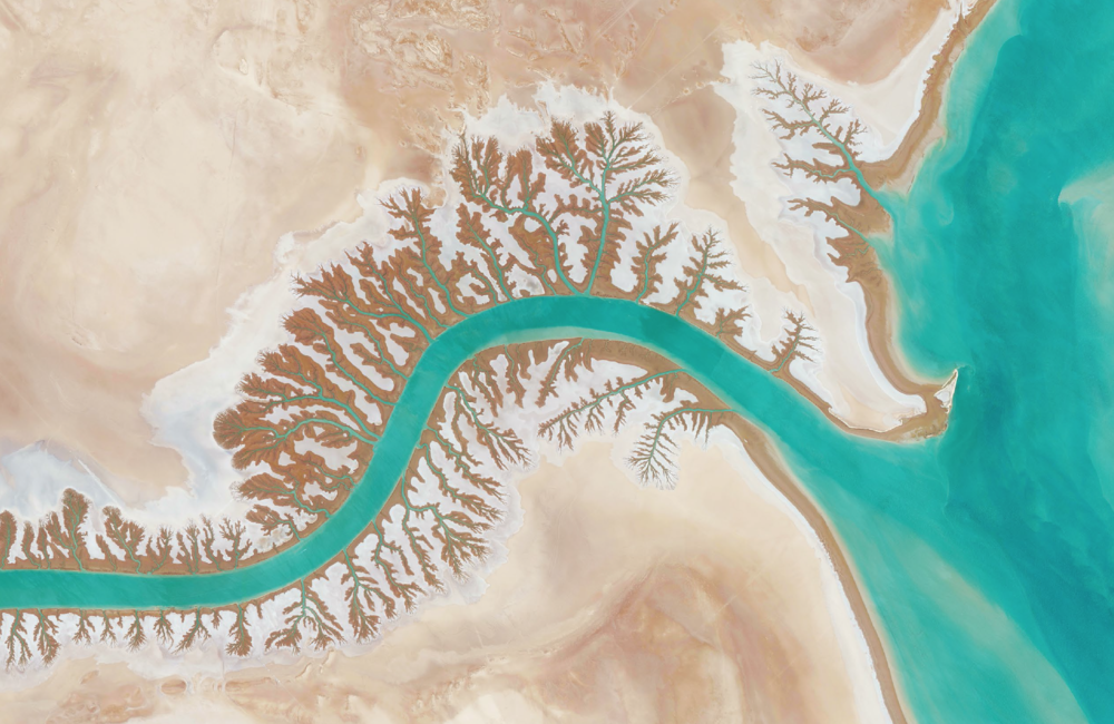 3/9/2016  Dendritic drainage systems  Shadegan Lagoon, Iran  30.327274, 48.829255     A dendritic drainage pattern is seen around the Shadegan Lagoon by Musa Bay in Iran. Dendritic literally means branched, as in resembling the pattern of a tree. This shape develops when streams move across relatively flat and uniform rock or over a surface that resists erosion.